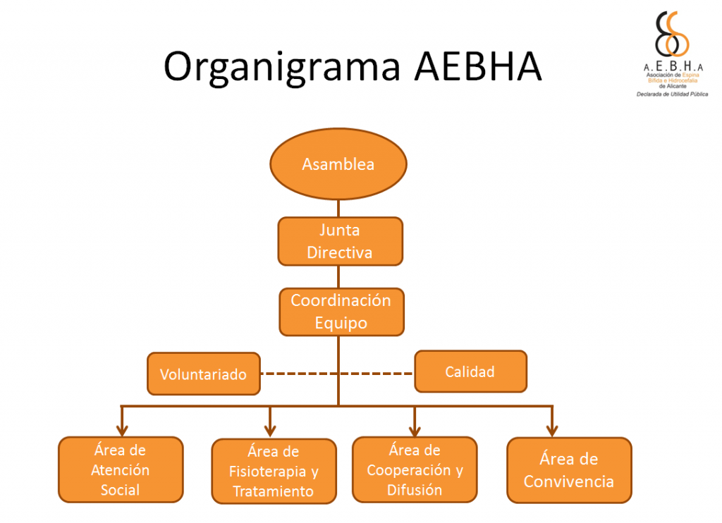 organigrama aebha